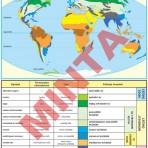 A földrajzi övezetesség