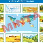 A Föld növényzeti övei